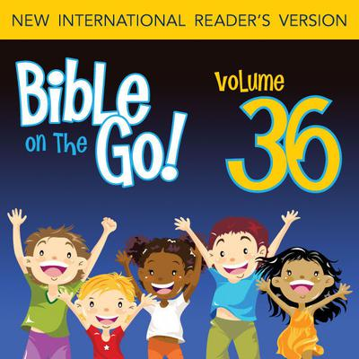 Bible on the Go Vol. 36: The Twelve Disciples; Sermon on the Mount, Part 1 (Matthew 5-6, 10) by Zondervan audiobook