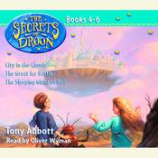 The Secrets of Droon: Volume 2 by  Tony Abbott audiobook
