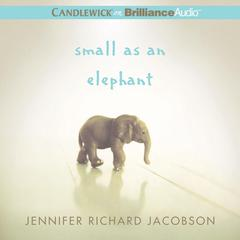 Small as an Elephant by Jennifer Richard Jacobson audiobook