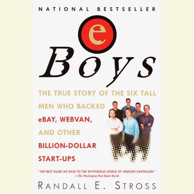 Eboys by Randall E. Stross audiobook