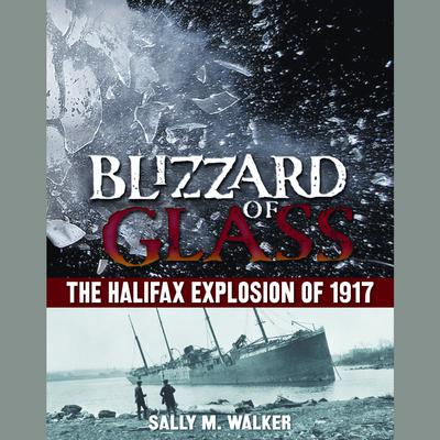 Blizzard of Glass by Sally M. Walker audiobook