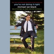 You're Not Doing It Right by  Michael Ian Black audiobook