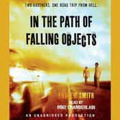 In the Path of Falling Objects by  Andrew Smith audiobook