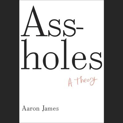 Assholes by Aaron James audiobook