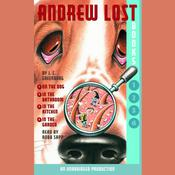 Andrew Lost: Books 1-4 by  J. C. Greenburg audiobook