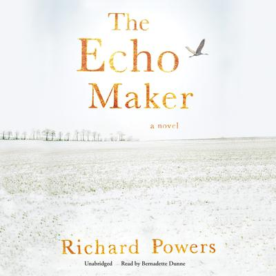 The Echo Maker by Richard Powers audiobook
