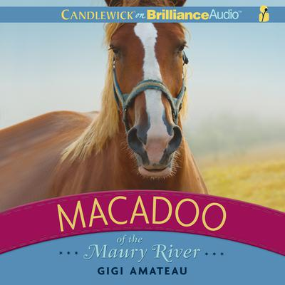 Macadoo of the Maury River by Gigi Amateau audiobook