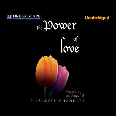 The Power of Love by Elizabeth Chandler audiobook