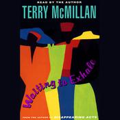 Waiting to Exhale by  Terry McMillan audiobook