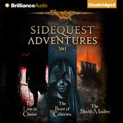 SideQuest Adventures by  Mark Teppo audiobook