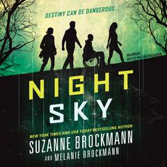 Night Sky by Suzanne Brockmann audiobook