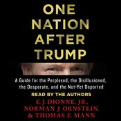 One Nation After Trump by  Norman J. Ornstein audiobook