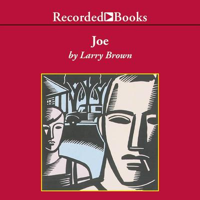 Joe by Larry Brown audiobook