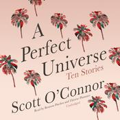 A Perfect Universe by  Scott O'Connor audiobook
