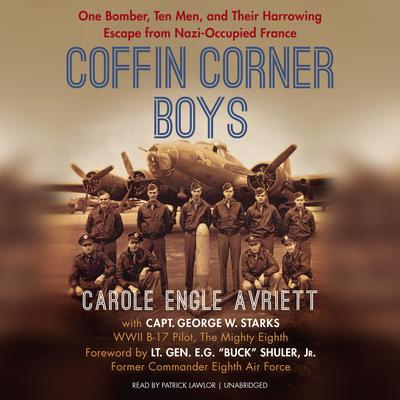 Coffin Corner Boys by Carole Engle Avriett audiobook