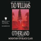 Otherland 3: Mountain of Black Glass by  Tad Williams audiobook