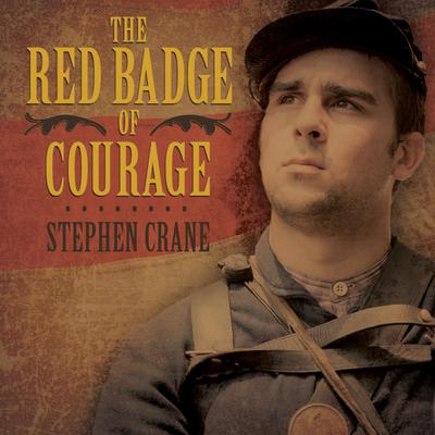 an analysis of the literary techniques in the red badge of courage a novel by stephen crane