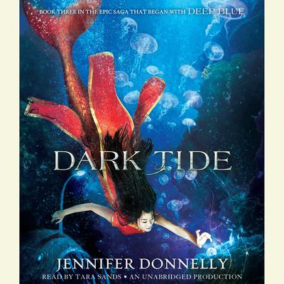 Dark Tide by Jennifer Donnelly audiobook