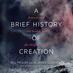 A Brief History of Creation