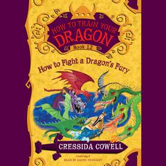 How to Train Your Dragon:  How to Fight a Dragon's Fury by Cressida Cowell audiobook