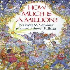 How Much Is a Million? by David M. Schwartz audiobook