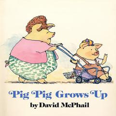 Pig Pig Grows Up by David  McPhail audiobook