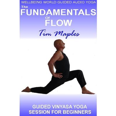 The Fundamentals of Flow by Tim Maples audiobook