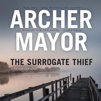 The Surrogate Thief by Archer Mayor audiobook
