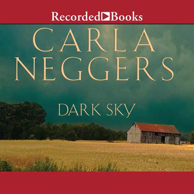 Dark Sky by Carla Neggers audiobook