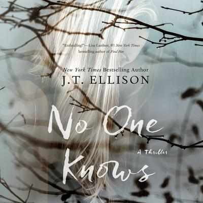 No One Knows by J. T. Ellison audiobook