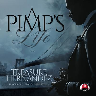 A Pimp's Life by Treasure Hernandez audiobook