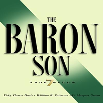 The Baron Son by Vicky Therese Davis audiobook