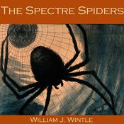 The Spectre Spiders by  William J. Wintle audiobook