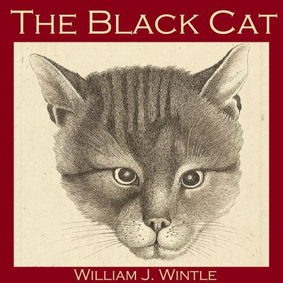 The Black Cat by William J. Wintle audiobook