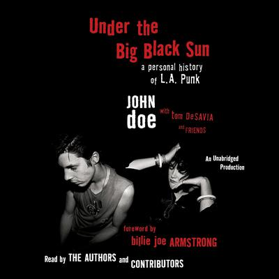 Under the Big Black Sun by John Doe audiobook