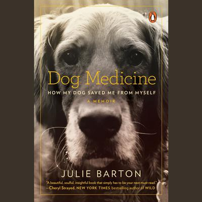 Dog Medicine by Julie Barton audiobook