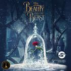 Beauty and the Beast  by Elizabeth Rudnick, Disney Press