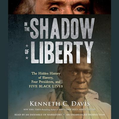 In the Shadow of Liberty by Kenneth C. Davis audiobook