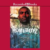 Homeboyz by  Alan Lawrence Sitomer audiobook