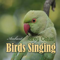 Birds Singing: Ambient Sound for Mindful State