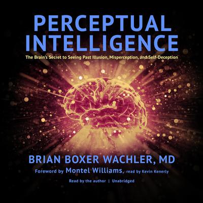 Perceptual Intelligence by Brian  Boxer Wachler audiobook
