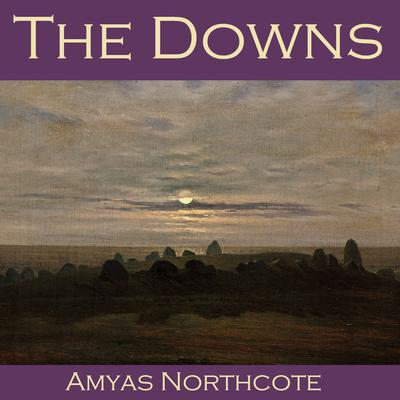 The Downs by Amyas  Northcote audiobook