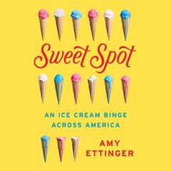 Sweet Spot by Amy Ettinger audiobook
