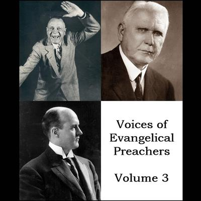 Voices of Evangelical Preachers - Volume 3 by Billy Sunday audiobook