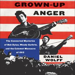 Grown-Up Anger by Daniel Wolff audiobook
