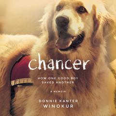 Chancer by Donnie Kanter Winokur audiobook