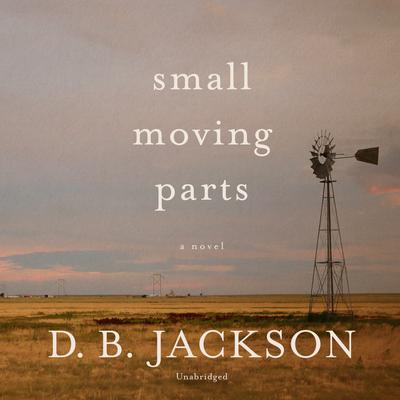 Small Moving Parts by D. B. Jackson audiobook