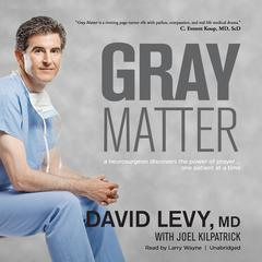 Gray Matter by David I. Levy audiobook