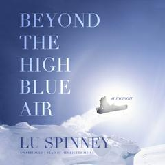 Beyond the High Blue Air by Lu Spinney audiobook