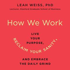 How We Work by Leah Weiss audiobook